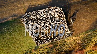 Aerial Shot Of Sheepfold In The Mountains - Video Drone Footage