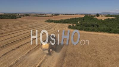 Combine Harvester In Wheat Fields, Valensole, Provence, France - Video Drone Footage
