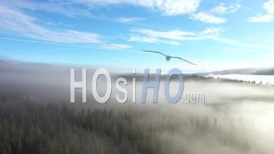 Voler Au-Dessus Des Nuages Dans Une Journée Ensoleillée - Vidéo Drone