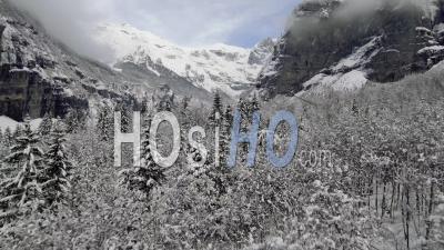 De La Neige Fraîche Tombe Dans La Région De Sixt Fer à Cheval Dans Les Hautes Alpes De France. - Vidéo Drone