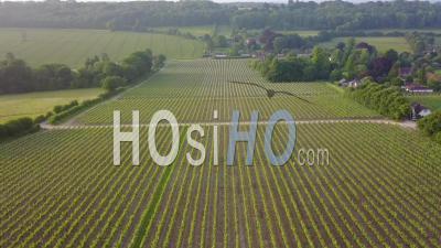Vue Aérienne De La Campagne Du Hampshire Et Du Vignoble De Hambledon, Au Royaume-Uni - Vidéo Drone