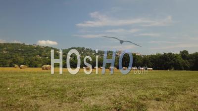 Flight Over Fields In The Vincinity Of Callian Vidéo Drone