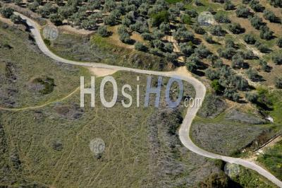 Winding Rural Road Running Through Olive Trees, Ronda, Spain. - Aerial Photography