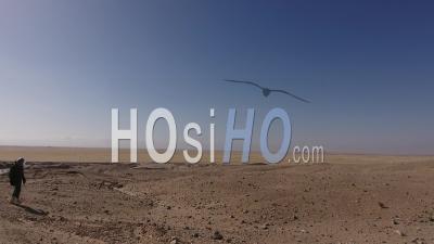 Empreintes De Pas Et Astronaute Marchant Lentement, Dans Un Désert, Vue De Dos, Travelling Avant Par Drone