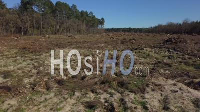 Vue Aérienne De Drone De Déforestation, Destruction De L'environnement - Point De - Vidéo Drone