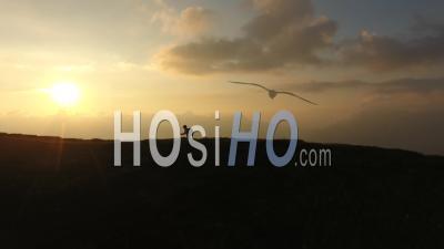 Coureur Sur Le Mont Joly - Vidéo Drone