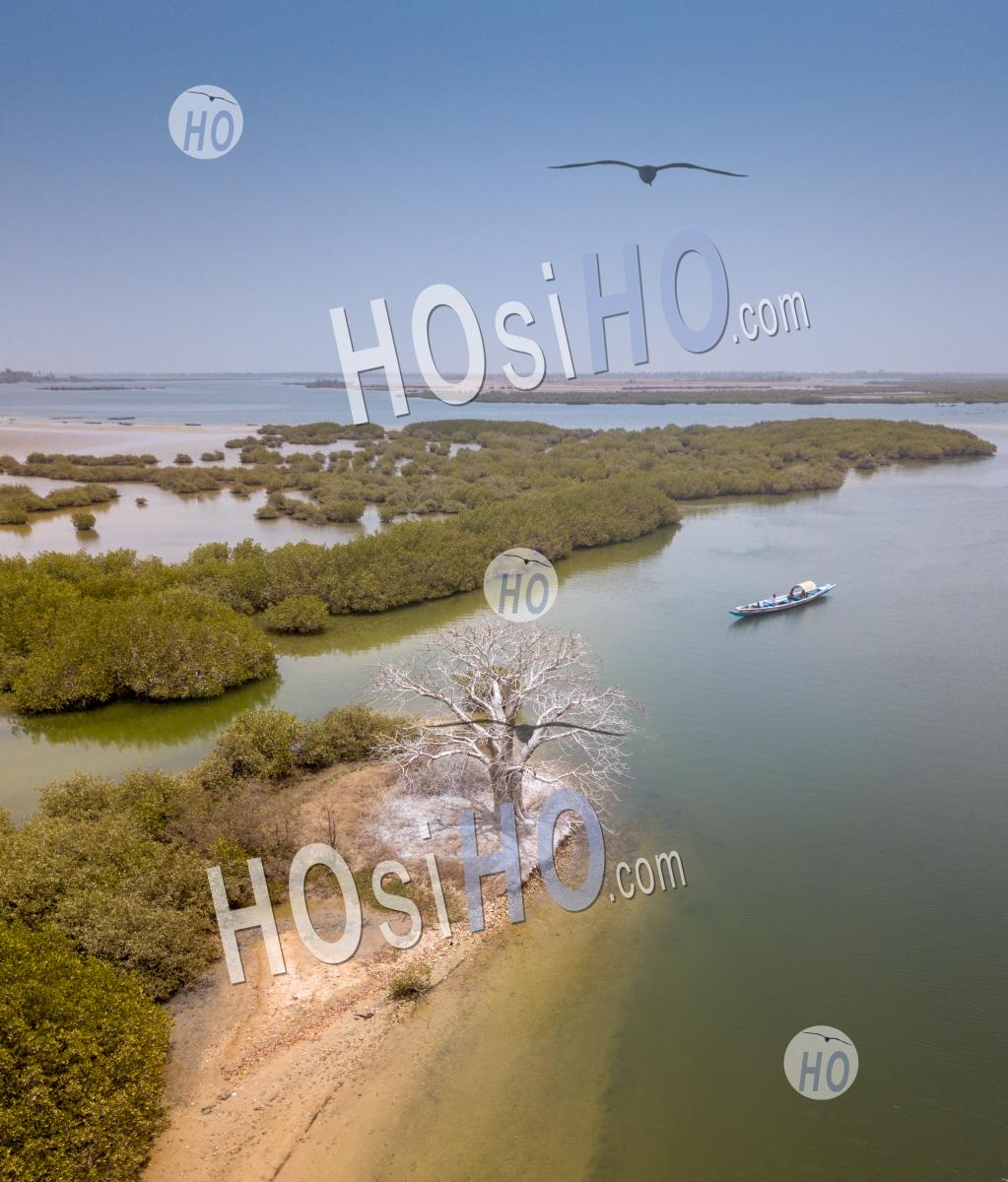 Sine Saloum - Aerial Photography