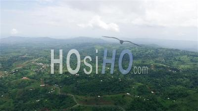 Haut Voyageant Sur Les Montagnes De L'ouest Du Cameroun - Vidéo Drone