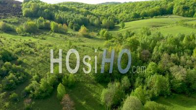 Paysage De Campagne Au Printemps - Vidéo Drone