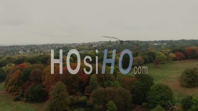 Vue Aérienne Des Bois à L'automne Au Nord De Londres (chaleur Du Champ De Bataille) - Vidéo Drone