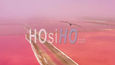 Vue Aérienne Sur Les Marais Salants Rouge Et Rose Vives Près De Walvis Bay, Namibie - Vidéo Drone