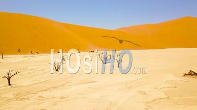 Aerial View The Dead Trees At Sossusvlei Desert Sand Dunes In The Namib Desert, Namibia, Africa - Video Drone Footage