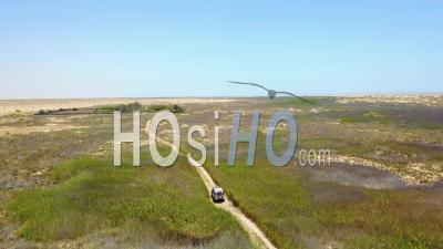 Aerial View Of A 4wd Jeep Vehicle Driving Through A Grassy Or Marsh Area On Safari In Namibia, Africa - Video Drone Footage
