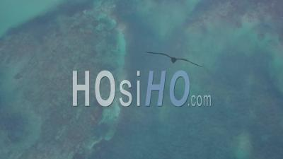 Aerial View Of A Dolphin Swimming Center At Punta Cana In The Dominican Republic - Drone Point Of View