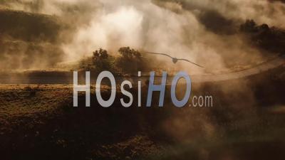 Vue Aérienne D'une Voiture Circulant Sur Une Route Brumeuse à Travers La Campagne à L'aube Ou Au Coucher Du Soleil - Vidéo Drone
