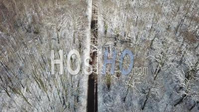 Chasse-Neige Au Travail Sur Une Route Forestière, Vidéo Drone