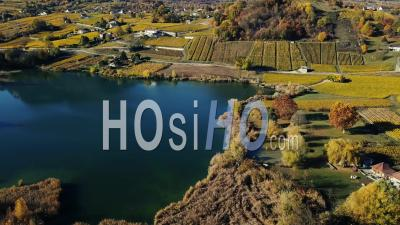 Lake With Autumn Vines, Video Drone Footage