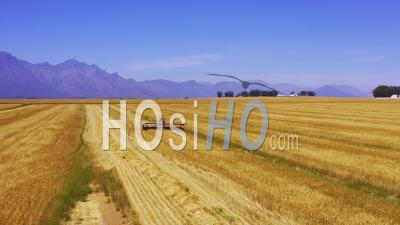 Massey Ferguson Harvester In Front Of Mountains, Cape Town, South Africa - Video Drone Footage