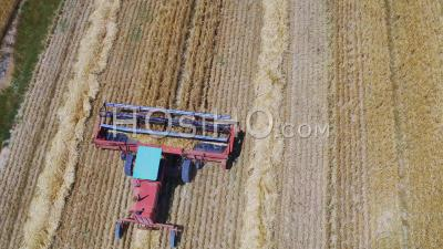 Massey Ferguson Combine Harvester, Cape Town, South Africa - Video Drone Footage