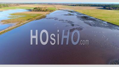 Paysage Agricole Inondé, Automne, Suède - Vidéo Drone
