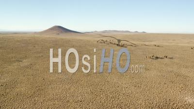 Aerial View Slow Motion Herd Of Wild Horses Running Across Plain