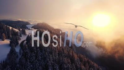 Coucher De Soleil Sur La Forêt Et La Falaise, La Feclaz, Savoie, France, Vidéo Drone
