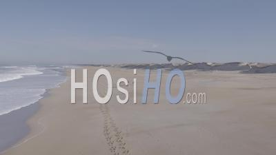 Woman Horse-Riding Gallop With Her Horses On A Wild Beach By The Ocean - Aerial Video By Drone