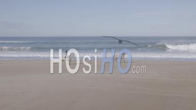 Femme Cavalière Avec Ses Deux Chevaux Au Trot, En Face De L'océan - Vidéo Aérienne Par Drone
