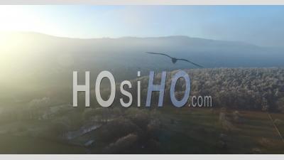 Paysages Gelés, Alsace, France - Vidéo Drone