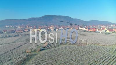 Frozen Vineyards And Alsacian Village, Alsace, France - Drone Point Of View