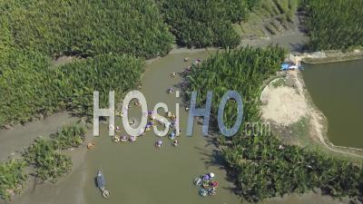 Top View With Drone Of Coconut Tree Forest With Bamboo Basket Boats In Hoi An, Vietnam