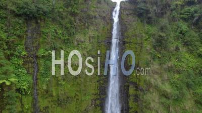 Waterfall At Akaka Falls State Park, Hawaii - Video Drone Footage