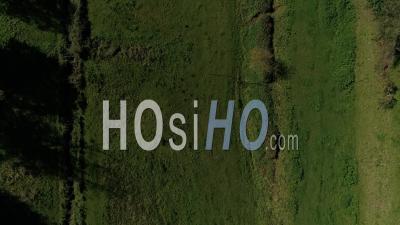 Bocage Et Petite Rivière à Coutances, Normandie - Vidéo Aérienne Par Drone