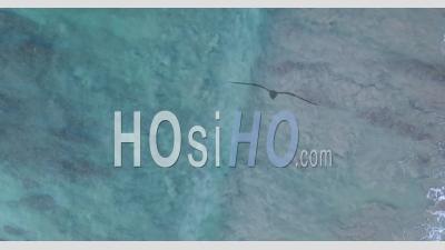 Vue De Dessus Du Mouvement De L'eau Sur Le Récif - Vidéo Aérienne Par Drone