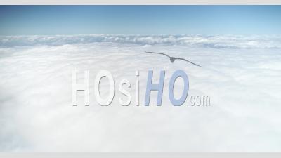 Au-Dessus Des Nuages - Vidéo Drone