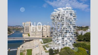 L'arbre Blanc, In Montpellier, By Drone During Covid-19