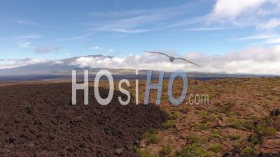 Large View Of Mauna Loa Volcano Coming Out The Clouds, Hawaii - Video Drone Footage