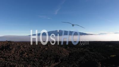 Aerial View Of Mauna Loa Volcano Coming Out The Clouds, Hawaii - Video Drone Footage