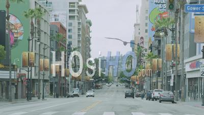 Empty Hollywood Boulevard During Covid-19 Outbreak, La, Usa - Ground Video