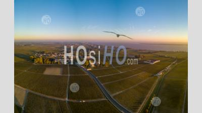Route Des Chateaux, Vineyard In Medoc, Famous Wine Estate Of Bordeaux Wine - Aerial Photography
