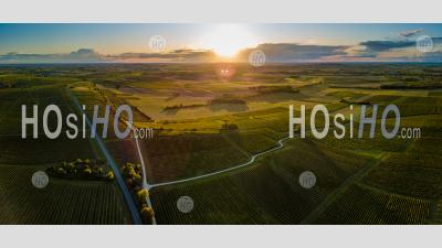 Aerial View Of Bordeaux Vineyard At Sunset - Aerial Photography