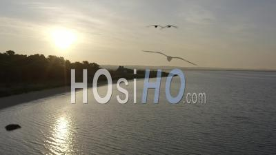 Pen Bron's Peninsula Landscape Drone Footage In Loire Atlantique France