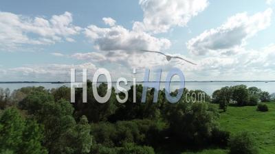 Lac Du Der Chantecoq Lac Avec Réflexion De Beaux Nuages - Vidéo Aérienne Par Drone