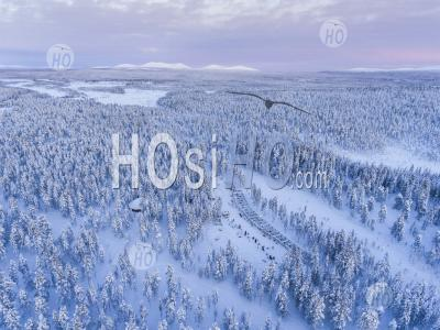 Aerial Drone Photo Of A Snow Covered Winter Forest Full Of Trees At Sunset In The Arctic Circle In Finnish Lapland, Finland