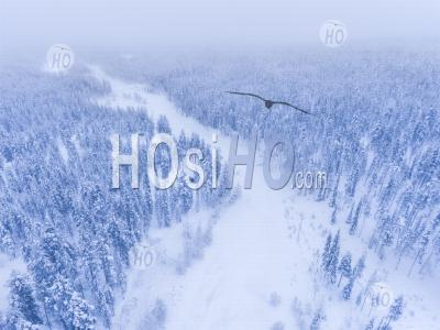 Aerial Of Frozen River And Snow Covered Forest Winter Landscape Showing Amazing Lapland Scenery In Scandinavia In Finland - Aerial Photography