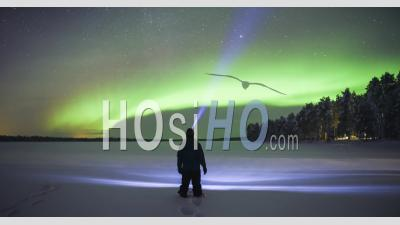 Timelapse Of Person Watching Aurora Borealis During Strong Bright Green Northern Lights Display In Unique Amazing Travel Experience. Time Lapse In Lapland, Finland