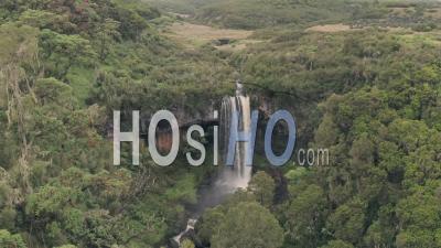 Slow Motion Ayres's Hawk Eagle (hieraaetus Ayresii) In Flight, Aberdare National Park, Kenya - Aerial Drone View