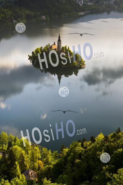 Paysage De Lever Du Soleil Du Lac De Bled Island Réflexions Et L'église De L'assomption De St Mary, Gorenjska, Slovénie, Europe