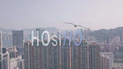 Residential Buildings And Skyscrapers In Happy Valley, Hong Kong. Aerial Drone View