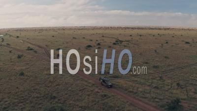 Elephant Sighting While On Wildlife Safari Vacation In Laikipia, Kenya. Aerial Drone View